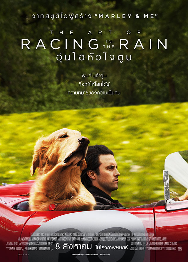 Thai Poster of The Art of Racing in the Rain