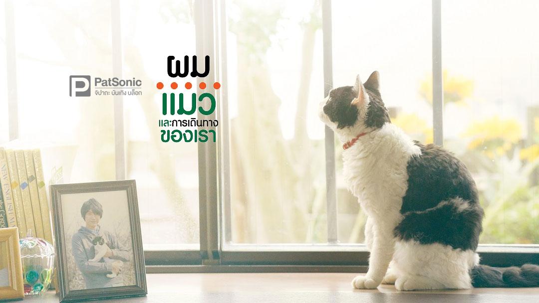 รีวิว The Travelling Cat Chronicles   ผม แมว และการเดินทางของเรา